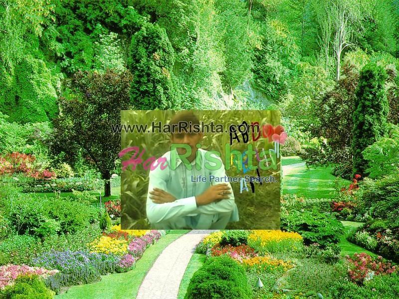 Qazi Boy Rishta in Kot Addu